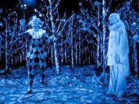 Arlequim e Pierrot